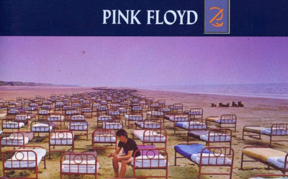 Pink Floyd, natural disasters and the lizard brain